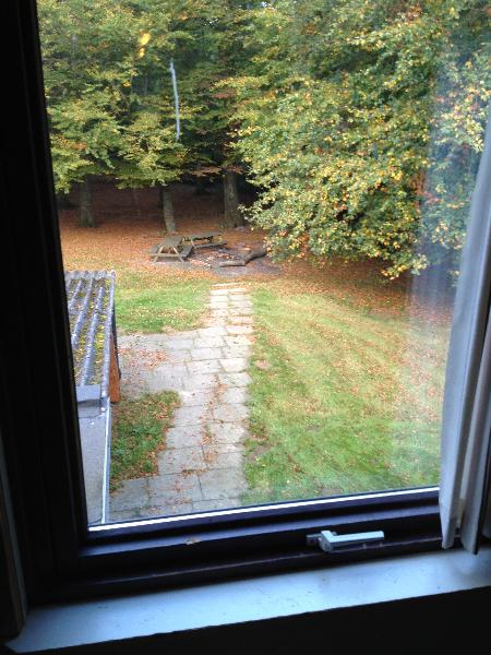 skovhuset-53-udsigt-fra-sovesal-til-baalplads